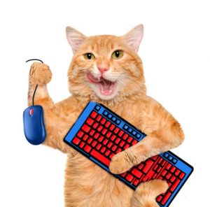 Orange cat has his keyboard and mouse ready to shop for holiday gifts for cat lovers.